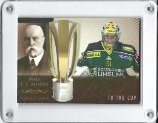 Habal Vladislav OFS Masked 2013-14 Road to the Cup RAINBOW xx/12 č.19